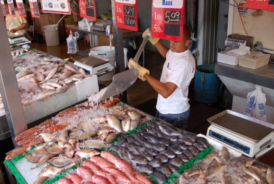 Seafood fraud can happen at any point in the supply chain, undermining law-abiding fishers and misleading consumers. (Photo credit: NOAA)