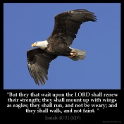 Isaiah_40-31