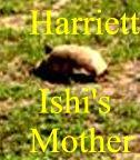 ISHIHarriett6